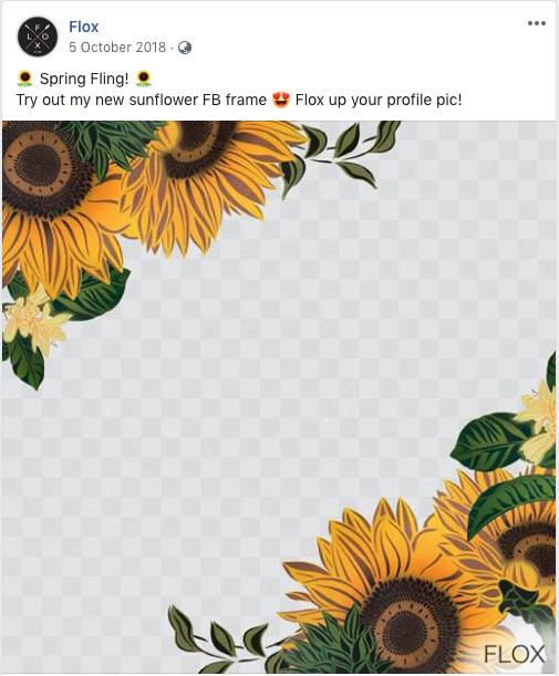 Flox profile filter for Facebook
